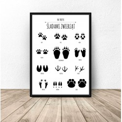 """Plakat dla dzieci """"Śladami zwierząt"""""""