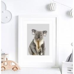 Plakat do pokoju dziecka - miś Koala