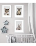 Poster for the child's room - Kitten 4