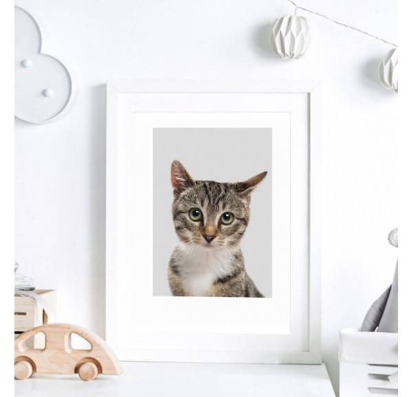 Poster for the child's room - Kitten