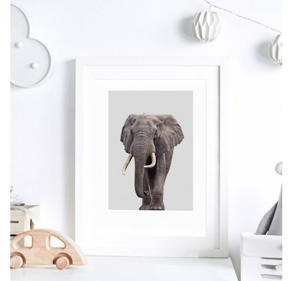 Poster for the child's room - Elephant