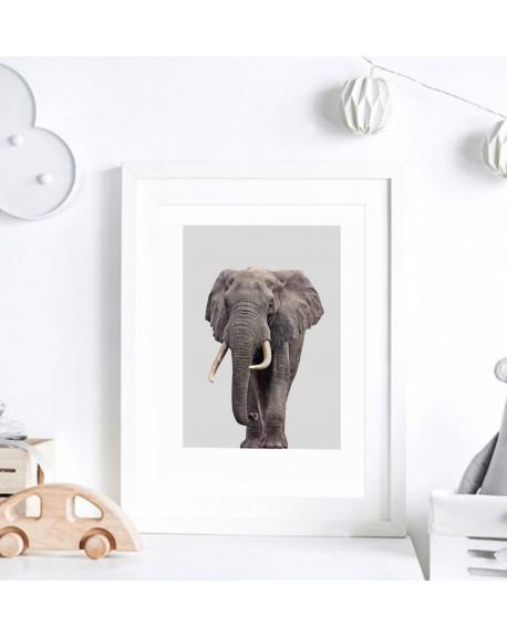 Plakat do pokoju dziecka - Słoń
