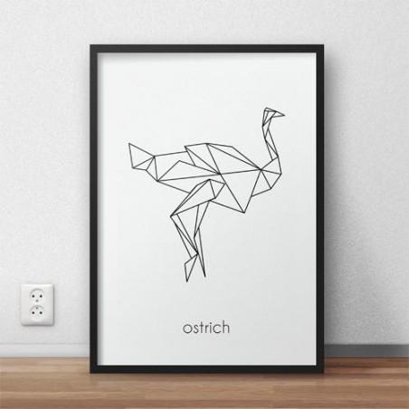 """Plakat ze strusiem """"Ostrich"""""""
