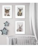 Set of 3 posters for the child's room - kitten, koala, rabbit 2