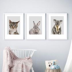 Zestaw 3 plakatów do pokoju dziecka - kotek, koala, królik
