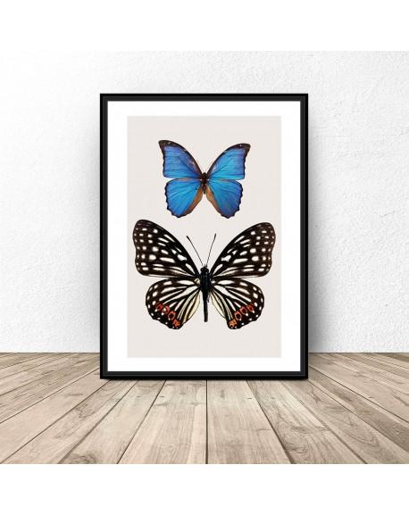"""Plakat na ścianę """"Dwa motyle"""""""