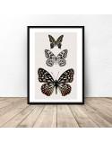 Plakat na ścianę z trzema motylami