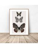 Plakat na ścianę z trzema motylami 2