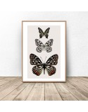 Poster for the wall with three butterflies 2