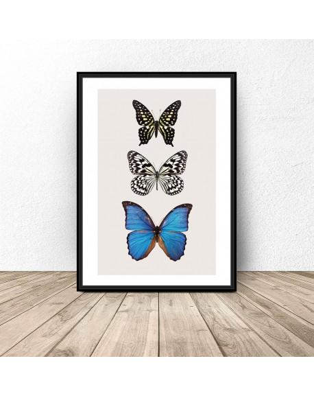 """Plakat na ścianę """"Trzy motyle"""""""
