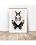Kolorowy plakat na ścianę z motylami 2
