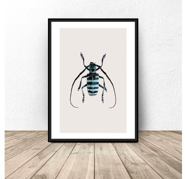 Plakat na ścianę z niebieskim żukiem