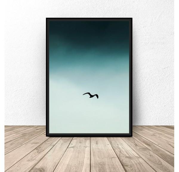 Plakat na ścianę Ptak na niebie