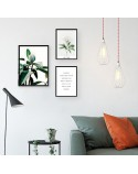 Set of 3 posters Figowiec