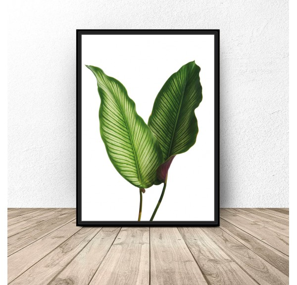 Decorative poster Two leaves