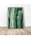 Plakat botaniczny Zielony kaktus 2