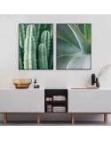 Zestaw dwóch plakatów Zielone kaktusy