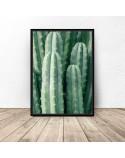 Zestaw dwóch plakatów Zielone kaktusy 2
