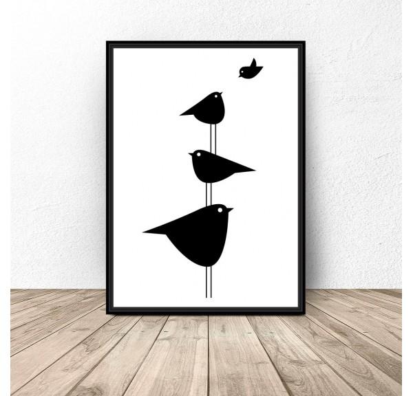 Plakat z ptaszkami