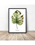 Botanical poster Monstera