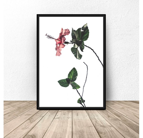 Plakat z różowym kwiatem