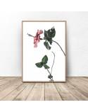 Plakat z różowym kwiatem 2