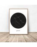 Poster constellation Bliznięta