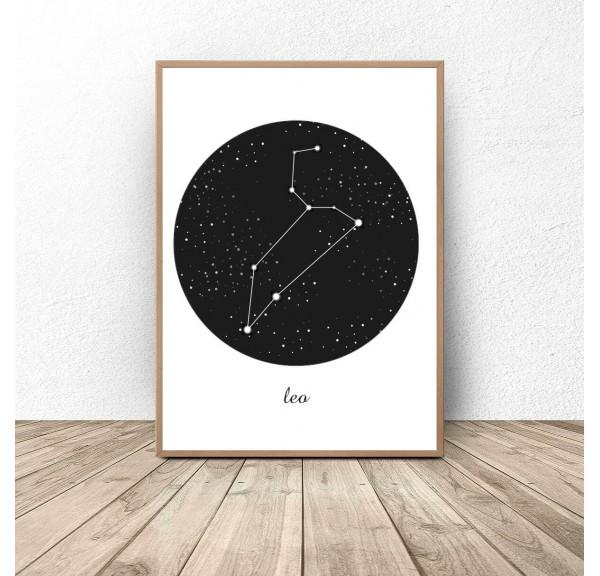 Plakat gwiazdozbiór Lew