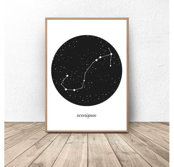 Poster constellation Scorpio