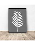 Gray poster White leaf