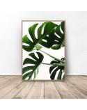 Botanical poster Lush monstera 2