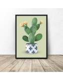 Poster Cactus on a green background