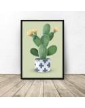 Plakat Kaktus na zielonym tle