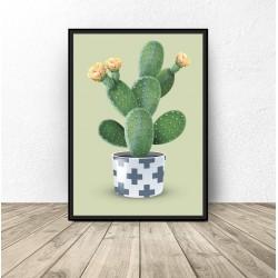"Plakat ""Kaktus"" na zielonym tle"