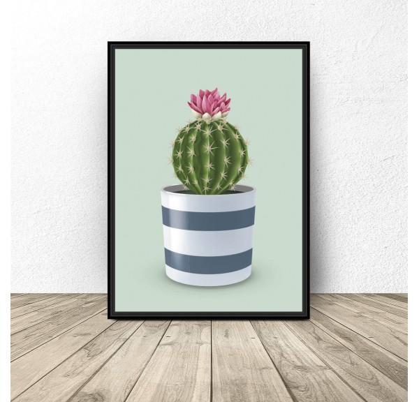 Poster Cactus on seledin background