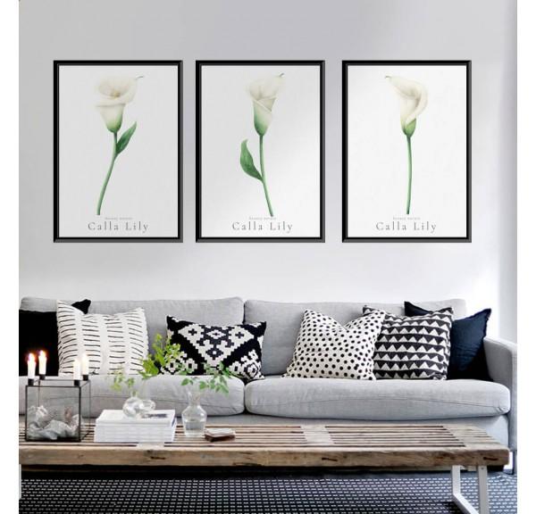 Set of three posters White kalie