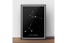 Plakat z gwiazdozbiorem Wielkiego Psa towarzysza Oriona z nazwą łacińską