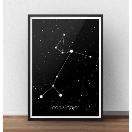 Plakat gwiazdozbiór Wielki Pies