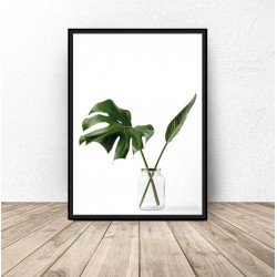 "Plakat ""Monstera w słoiku"""