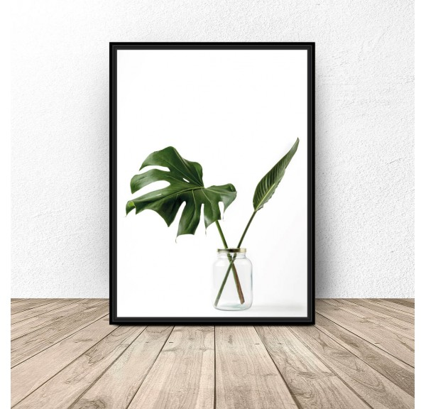 Poster Monstera in a jar