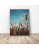 Plakat fotograficzny Trawa pod niebiem 3
