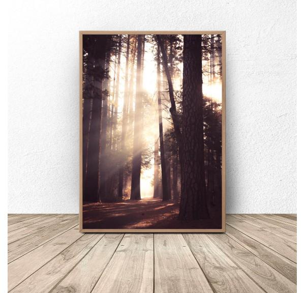 Plakat Złoty las