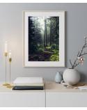 Plakat Zielony las w słońcu 2