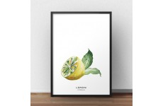 """Kolorowy i minimalistyczny plakat do kuchni """"Połówka cytryny"""""""