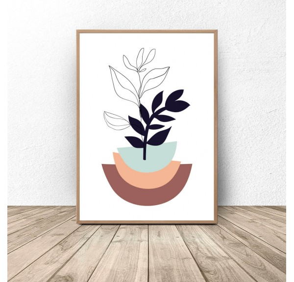 Plakat botaniczny Roślina w kolorowej doniczce