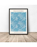 Plakat reprodukcja Aksamitka Merigold William Morris 3