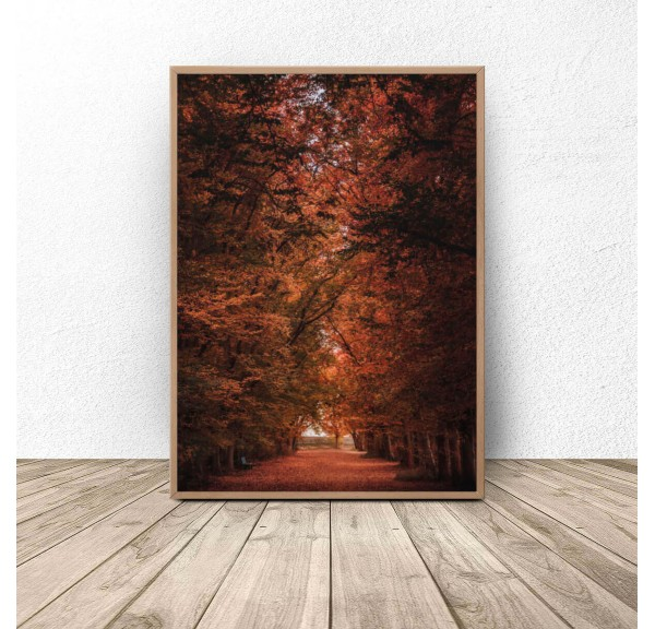 Plakat na ścianę Jesień w parku