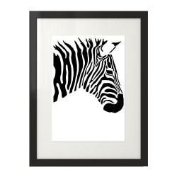 Czarno-biały plakat z zebrą oprawiony w czarną ramę z passepartout