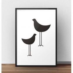 Plakat dwa czarne ptaki