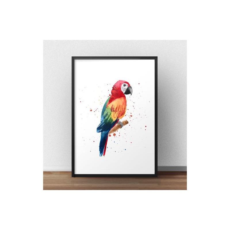Plakat w ramie z kolorową papugą Ara wystylizowaną na malowaną akwarelą
